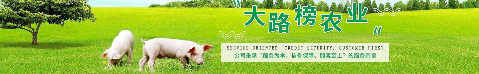 http://www.dalubang.cn/data/upload/202005/20200528134447_915.jpg